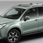Door Edge Guard Kit Jasmine Green Forester Subaru Forester Jasmine Green